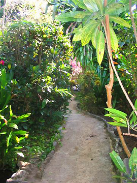 Entrance and Garden - Bananas Garden Negril Jamaica Resorts and Hotels