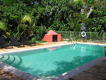 Banana's Garden Pool - Bananas Garden Pool Negril Jamaica Resorts and Hotels