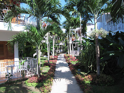 Grounds - Negril Palms, Negril Jamaica Resorts and Hotels