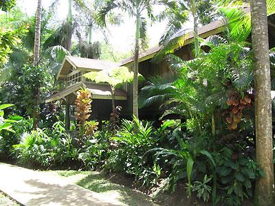 Photos Sunset At The Palms Beach Resorts Negril Resorts Negril Onestop Jamaica Resorts