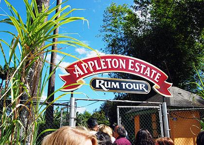 Appleton Estate Rum Tour Appleton Estate