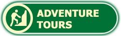 Book Adventure Tour Negril Jamaica