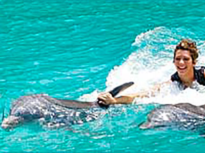 Dolphin Cove Negril Ultimate Swim Royal Swim with Dolphins