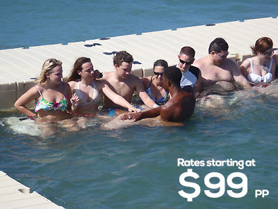 Dolphin Cove Negril With Rate Dolphin Cove Negril