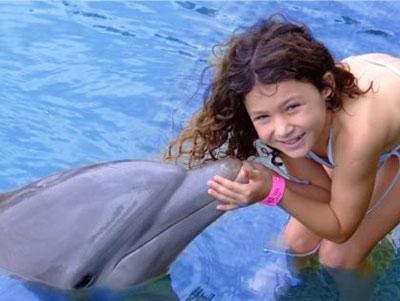 Encounter Dolphin Encounter