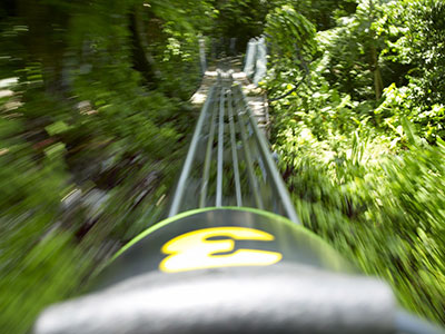 Mystic Mountain Adventure Tours Bobsled Fast Bobsled