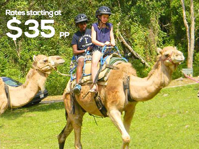 Prospect Estate Camel Ride With Rate Yaaman Adventure Park
