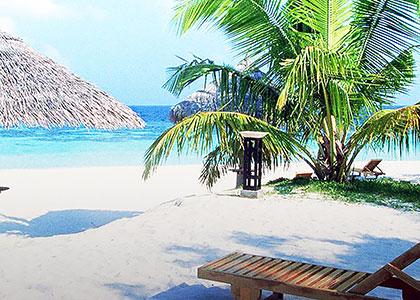 Zanzi Beach Resort Negril Jamaica