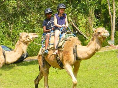 prospectestate_camelride Yaaman All-Inclusive